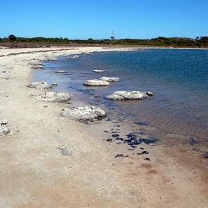 Stromatolites line the shore.