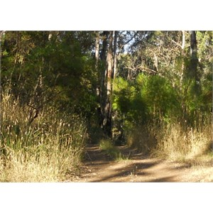 Red Gully entrance track