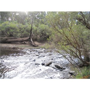 Red Gully - Blackwood River