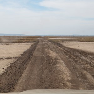 Graded section on mudflats - June 2013