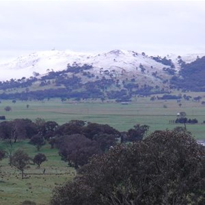 Wallaroo snow, 2012