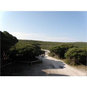 Skippy Point Camping Area