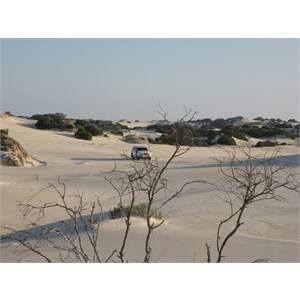 Hamersley Beach Track Sand Dunes