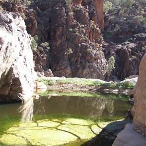 Nooldoonooldoona waterhole - Arkaroola SA