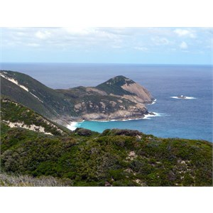 Bald Head - Flinders Peninsula