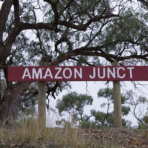 Amazon Junction