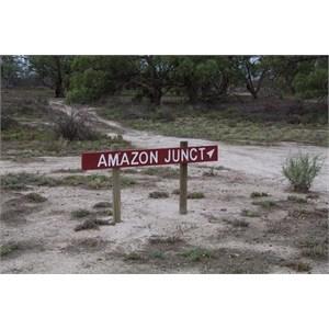 Amazon Junction