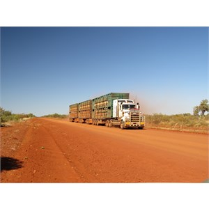 Road trains 53 metres in length