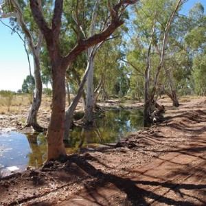 Elder Creek