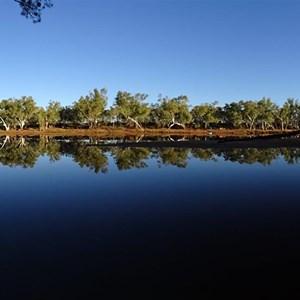 Lyons River 2018