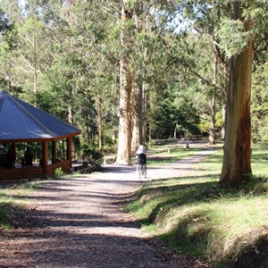 Picnic shelter and grassed area