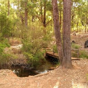 Nanga Brook at Nanga Brook campground