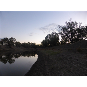 Darling River, Yanda camping area