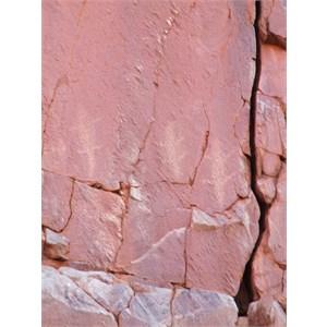 Petroglyphs high on the wall