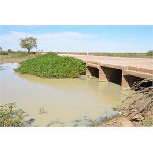 Cutta Burra Crossing - Eyre Creek