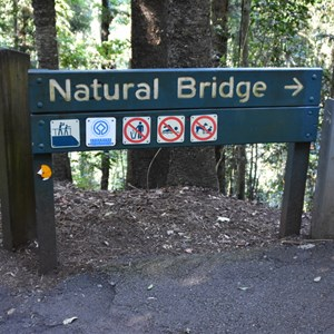 Natural Bridge, Springbrook National Park