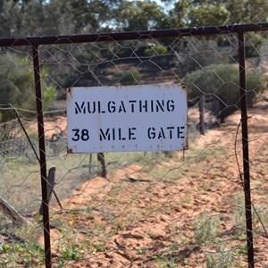 Dog Fence - Mulgathing Gate - 38 Mile Gate