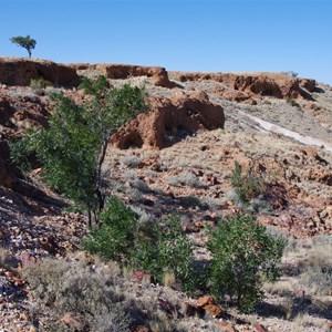 Dingo Caves