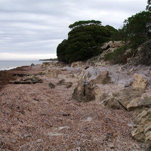 Cape Gantheaume Conservation Park D'Estrees Bay Self-guided Drive - Stop 1