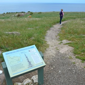 Cape Willoughby Lightstation Heritage Walk