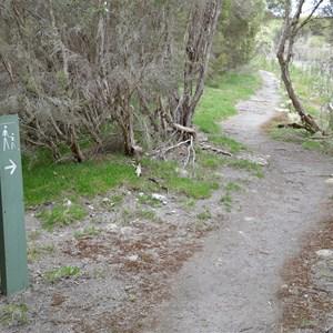 Murray Lagoon - Timber Creek Hike