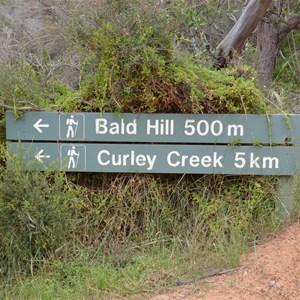 Bald Hill Hike