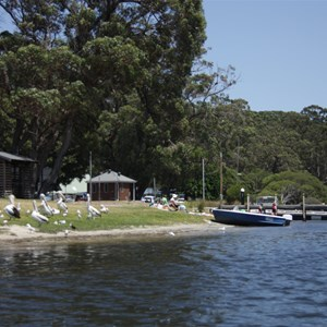 View from water looking back at boat ramp outside caravan park