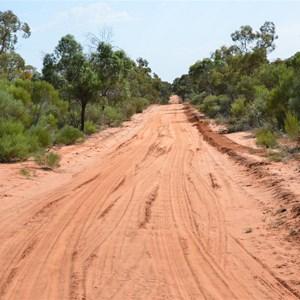 Danggali Conservation Park Track Junction
