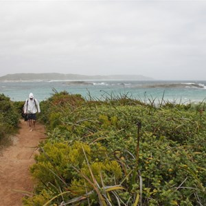 Walk trail to Madfish Bay
