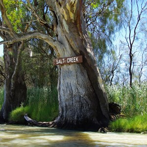 Salt Creek - Murray River