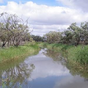 Eckert Creek