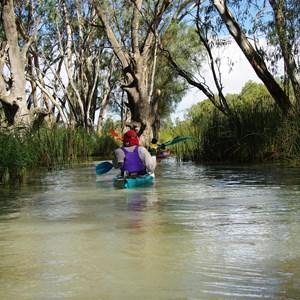Kylie Creek - Murray River