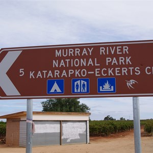 Murray River National Park - Katarapko - Eckerts Creek Turn Off
