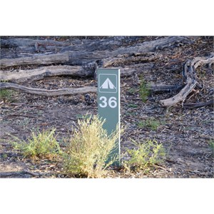 Campsite 36 - Katarapko Creek
