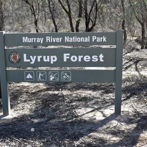 Murray River National Park - Lyrup Forrest Boundary Sign