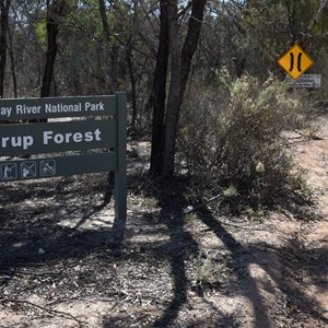 Murray River National Park - Lyrup Forrest Boundary Sign