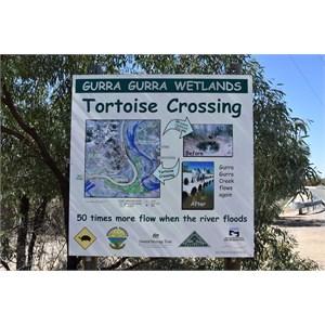 Gurra Gurra Wetlands Tortoise Crossing