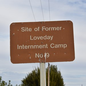 Loveday WWII Internment Camp 9
