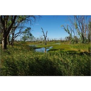 Loch Luna Game Reserve Boundary