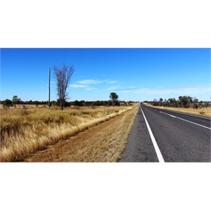 Highway and area near Junee Rest Area