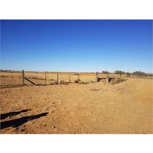 Dog Fence - Oodnadatta Track