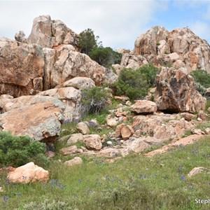 Castle Rock Lookout