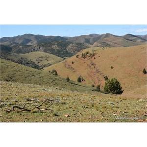 Vambata Hill Lookout