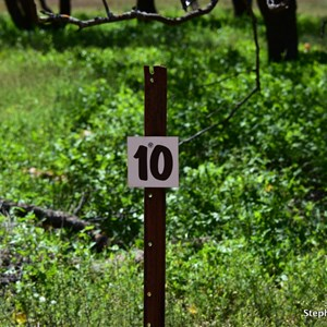 Stop 10 Arkapena Drive