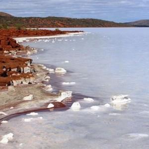 The salt encrusted shore of Lake Gairdner