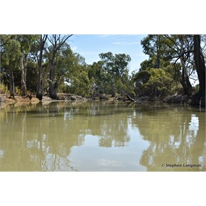 Deep Creek - Murray River