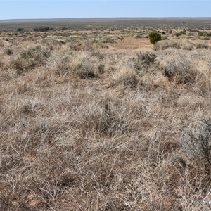 Lake Leaghur Lookout - Mungo NP