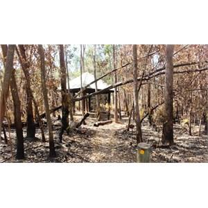 Burned area around information shelter