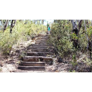 Part of the steps leading to the lookouts
