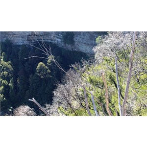 Katoomba falls are just out of sight at the bottom of the photo